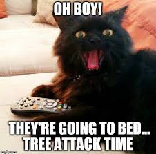 Christmas Cat Memes - when you leave the lights on your christmas tree and head off to bed