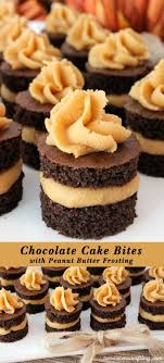 chocolate cake bites with peanut butter frosting cake bites