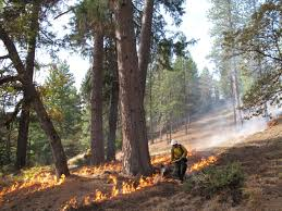 Wildland Fire Canada Conference 2014 by Anr News Releases Agriculture And Natural Resources Blogs