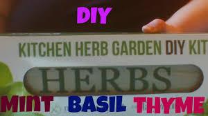 diy herb garden youtube