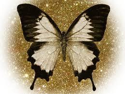 wallpapers of glitter butterflies butterfly glitter wallpaper butterfly gold glitter top backgrounds
