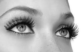 beauty bite how to apply false eyelashes flare