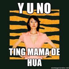 Tiger Mom Memes - tiger mom omg lawl wtf