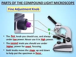 what is a light microscope used for microscope parts ppt video online download
