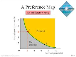 possibilities preferences and choices ppt download