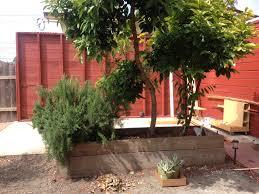 project backyard remodel build your own deck u2013 longfellow living