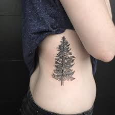 tattoos of trees meaning tattooteez tk