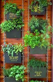 herb planter ideas vertical herb garden plans garden inspiration