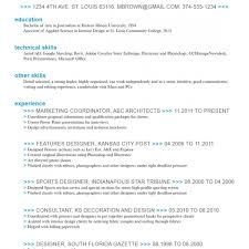 resume format for it professional free download best term