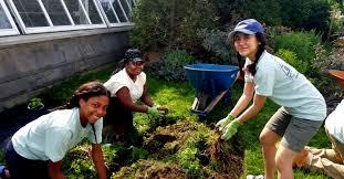 Botanical Garden Internship Now Accepting Applications Phipps 2018 Summer Internship
