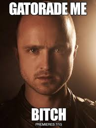 Jesse Pinkman Memes - we need to get some water boys that way we can just be all yo