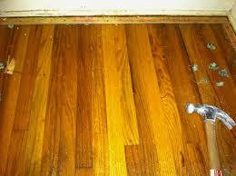 Urine Out Of Hardwood Floors Hardwood Floor U2013 A Jewel Under The Carpet Mom In Music City