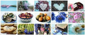 Flowers For Crafts - dried flower crafts