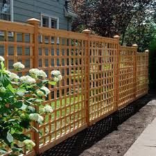 inexpensive fence ideas trellis fencing cheap fencing garden