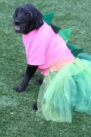 dino halloween costume diy dinosaur halloween costume the diy dog mom
