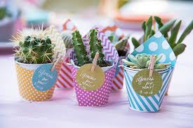 baby shower party favors diy mini succulent favors for a baby shower mami talks