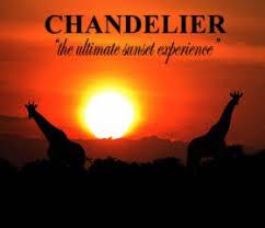 Chandelier Game Chandelier Game Lodge Oudtshoorn South Africa