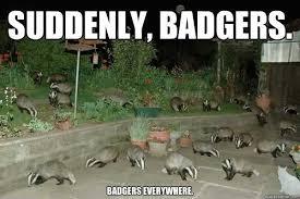 Badger Memes - best 10 honey badger humor ideas on pinterest honey badger meme