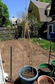 less noise more green making garden teepees