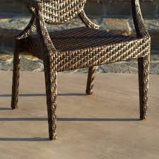 All Weather Wicker Adriana All Weather Wicker Dining Chair Set Of 2 Hayneedle