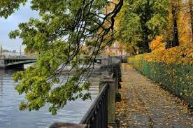 Summer Garden St Petersburg Russia - tree branches with autumn leaves hanging over the fontanka river