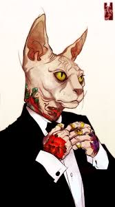 halloween cat background deviantart best 25 sphinx tattoo ideas only on pinterest sphynx cat tattoo