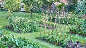 Fall Vegetable Garden Ideas Container Vegetable Gardening Ideas Hixathens