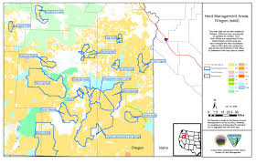 Blm Maps Colorado by Programs Wild Horse And Burro Herd Management Herd Management