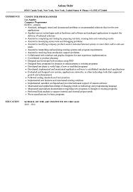 Computer Programmer Resume Objective Computer Programmer Resume Sample Velvet Jobs
