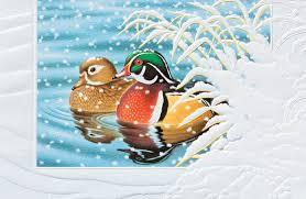 pumpernickel press wildlife cards lake christmas cards lake christmas cards christmas decore cheap