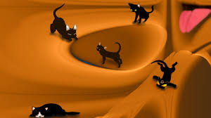 cat halloween background images cool halloween backgrounds wallpapers browse