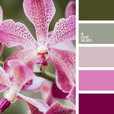 complementary colors pink complementary color palettes color palettes pinterest color