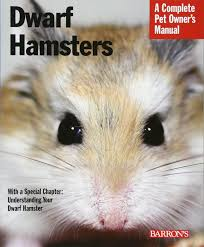 dwarf hamsters complete pet owner u0027s manual sharon vanderlip
