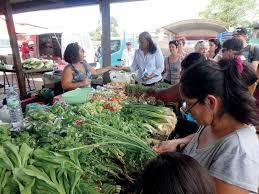 cuisine guyanaise cayenne atelier de cuisine créole guyanaise organisez vos