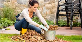 gardening tips gardening tips for the pacific northwest