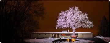 limo lights tour minneapolis holiday lights tours christmas lights in minneapolis glidden