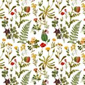 botanical wrapping paper botanical fabric wallpaper gift wrap spoonflower