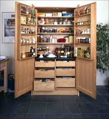 Pantry Cabinet Organizer Bathroom Brilliant Best 25 No Pantry Solutions Ideas On Pinterest
