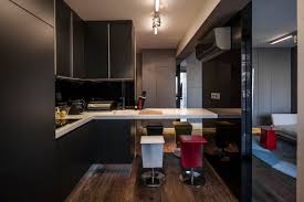 contemporary small apartment design with dark toned colors