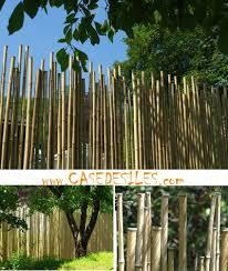 cloture de jardin pas cher les 25 meilleures idées de la catégorie cloture jardin pas cher