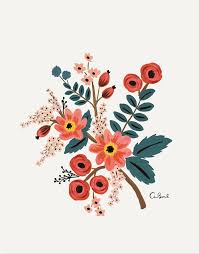 the 25 best flower illustrations ideas on watercolor