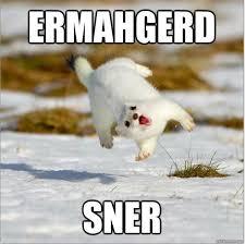 Emerged Meme - emerged meme rabbit meme best of the funny meme