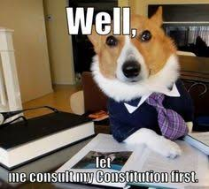 Advice Dog Meme Generator - nice little mess that i m sorting out with the irs regarding my