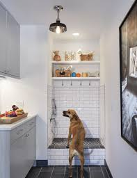 dog wash area design pictures remodel decor and ideas page 4