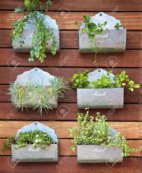 vertical gardening concept plants in a mail box stock photo