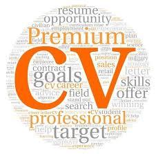 cv writting cv writing nottingham time professional cv writer 500