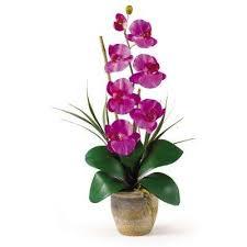 Artificial Orchids Artificial Flowers Artificial Plants U0026 Flowers The Home Depot
