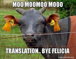 Moo Meme - moo moomoo mooo translation bye felicia hairless cow make a meme
