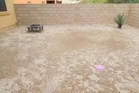 Low Maintenance Backyard Design Ideas The Home Depot - Desert backyard designs