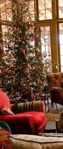 arizona christmas tree christmas tree cacti and holidays